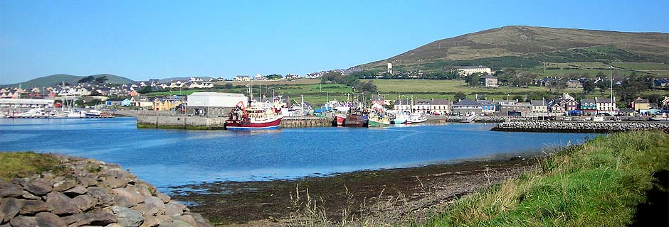 Fishing fleet in Dingle Harbour